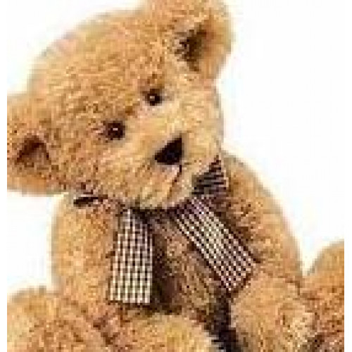 teddy bears Galway